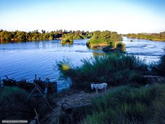 The Nile near Tombos, Northern State (By Escandio)