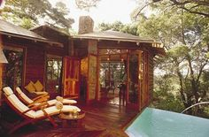 Tsala Hotel in South Africa - treehouse luxury hotel. Yes. I'll have some please
