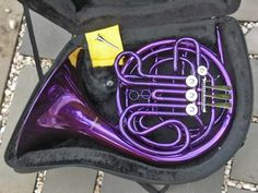 I will always believe that the French Horn is the prettiest instrument ever, but making it purple brings it to a whole other level of awesomeness.