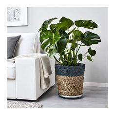 KRUSBÄR Plant pot, gray, natural