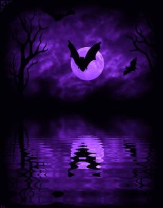 Murciélagos en púrpura