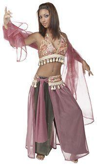Adult Arabian Princess Costume - Party City | My Halloween Costume ...