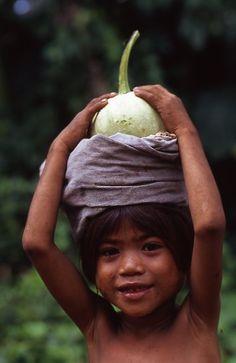 Nusa Tenggara Timur (Nusteng)