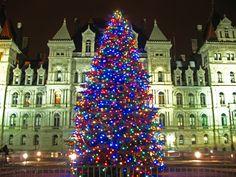 Albany, NY - Christmas Tree at Empire State Plaza #christmastree #christmaslights