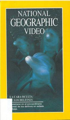 LA CARA OCULTA DE LOS DELFINES.É ben sabido que os delfíns son criaturas moi cariñosas e sensuais, pero ademais de compartir connosco esa encantadora imaxe, os delfíns en estado salvaxe son depredadores implacables e extremadamente intelixentes que empregan o seu enxeño para sobrevivir, cambiando ou inventando estratexias para adaptarse ao seu ambiente. DVD-T-40