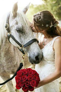 Horse Mariage