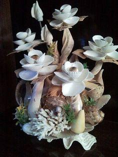 seashell art 24