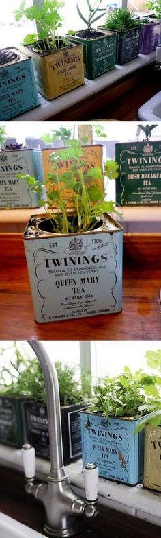 Twinings Tea tins in a variety of colors add vintage style to this windowsill herb garden.