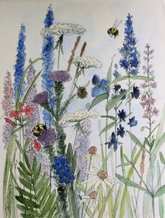 Nature Art Watercolor Illustrations by Laurie Rohner, via Behance