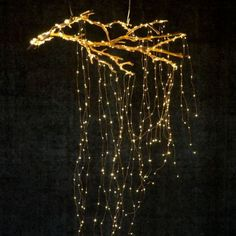 Stargazer Cascade Falls Lights, PlugIn is part of Branch decor - These Terrain exclusive LED string lights brighten your house inside and out With flexible wires, they can be scattered and strung anywhere Shop today! Autumn Lights, Holiday Lights, Gold Christmas Lights, Indoor Christmas Lights, Cascading Christmas Lights, Christmas Chandelier, Cascade Falls, Tree Lighting, Lighting Ideas