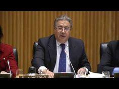 Comparecencia Ministro Interior Zoido Álvarez en Congreso Diputados