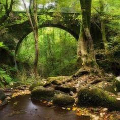 Eume River Bridge, Galicia, Spain (Puente sobre el Río Eume)