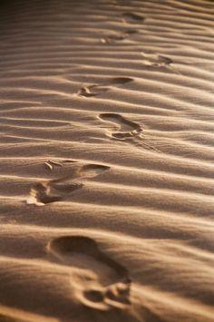 Spuren im Sand hat folgende Stichwörter: Wüste,  Marokko.