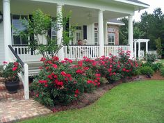 Wrap around porch....... mmmmmmmm.......... with gorgeous flower bushes growing in front! <3