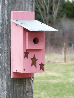 Rustic Slate Outdoor Pink Bluebird bird house by OutOnALimbADK