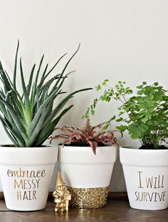 Customize flower pots with quotes and glitter.