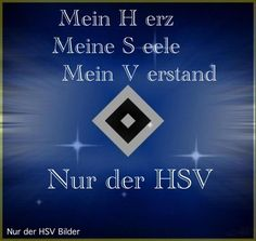 hsv fussball