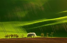 20ofthe most amazing shots ofnature you will ever see