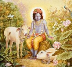 krishna with cow wallpaper - Google Search