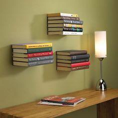 I love my Conceal Floating Bookshelf...So cool