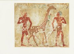 Paintings from the tomb of Rekh-mi-Rē' at Thebes / by Norman de Garis Davies ; with plates in color from copies by Nina de Garis Davies and Charles K. Wilkinson, 1906. Metropolitan Museum of Art Publications. The Metropolitan Museum of Art, New York (b10471157)     A giraffe in ancient Egypt is a gift fit for Rekh-mi-Re  #egypt