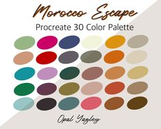 Morocco Escape / Procreate Color Palette / Digital Swatches #moroccancolorpalette #moroccocolor #moroccocolours #moroccocoloring #moroccocolorsandpatterns #traditionalmoroccancolors #indiancolorpalette #moroccancoloursoutdoors #marrakechcolorpalette #moroccaninteriordesigncolor Create Color Palette, Ipad App, Logo Background, Girl And Dog, Pattern And Decoration, Color Swatches, Color Themes, Design Bundles, Victorian