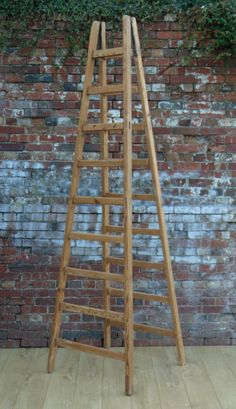 French Fruit Pickers Ladder