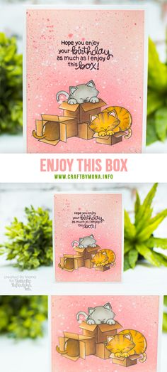 Hi lovelies, today I am showing you a one layer birthday card on the blog. For my card I used the Newton Loves Boxes stamp set from Newton's Nook Design.