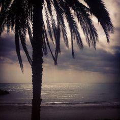 En el horizonte encuentro todas las respuestas...:))
