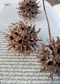Copper Electroformed Sweet Gum Tree Balls Electroplated Found Object Metal Sculpture. $140.00, via Etsy.