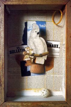 Shadow Boxes by Joseph Cornell