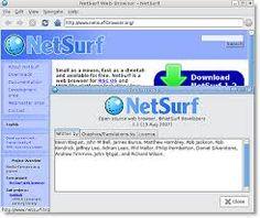 Bildresultat för netsurf