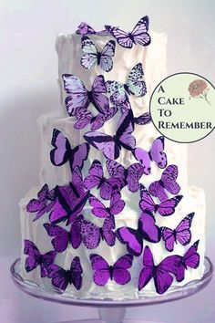 30 lavender ombre wafer paper butterflies for wedding cake decorating and cupcake toppers 30 lavender ombre wafer paper butterflies for wedding cake decorating and cupcake toppers A Cake To Remember LLC Cake nbsp hellip Wedding Cupcake Toppers, Rustic Wedding Cake Toppers, Wedding Cake Decorations, Wedding Topper, Wedding Cupcakes, Quince Decorations, Ceremony Decorations, Wedding Decor, Plain Wedding Cakes