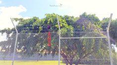 Barbed wire checking | Megabat | Pinkenba Queensland