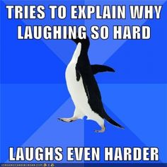 Socially Awkward Penguin strikes again>>>> this is me. I can be laughing at nothing then people start looking at me weird, then I can't stop!!!