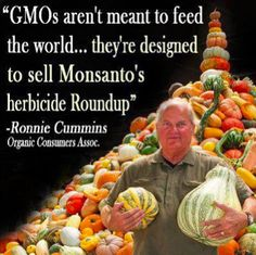 GMO's aren't meant to feed the world they're meant to sell more Roundup