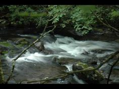 The River by Brian Doerksen - YouTube