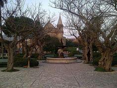 Limbadi - Calabria - Italia