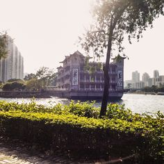 Today I am detailing the cycling path from Tai Wai (Sha Tin) to Tai Po or Tai Mei Tuk. Hong Kong, Paths, Tin, Cycling, My Style, Biking, Bicycling, Pathways, Riding Bikes