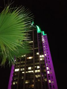 Mobile AL downtown during Mardi Gras. View from top of Battlehouse Hotel