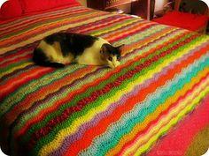 Wavy Chevron Ripple by Bella Karma, Red Heart Super Saver yarn, white shell border.  I love this blanket!  Rip, Rip, Hurray Ripple.