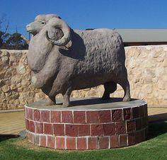 'The Big Ram in Karoonda South Australia recognises the importance of the sheep industry in the region. Australia Facts, Aussie Australia, Australia Tours, Australia Beach, South Australia, Western Australia, Australian Websites, Red And Yellow Flag, Photo Zone
