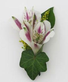 Hall's Flower Shop and Garden Center - Alstroemeria Boutonniere, $10.99 (http://www.hallsflowershop.com/alstroemeria-boutonniere/)