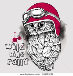 The image of an owl in a motorcycle helmet. Vector illustration.  - stock vector