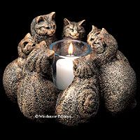 Cat Lovers,Cat Collectibles,Music Boxes,Litter Boxes, Cat Tote Bags, Leads, Cat Harnesses, Cat Grooming Tools