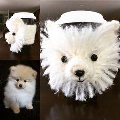 "9 Me gusta, 5 comentarios - Cozies - Patterns - Kits (@hookedbyangel) en Instagram: ""Pomeranian Mug Cozy. #hookedbyangel #crochetdog #dogcozy #pomeranianswag ##pommymommy"""