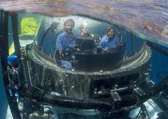 Ocean Legend Dr. Sylvia Earle Celebrates Her 80th Birthday