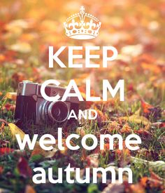 KEEP CALM AND WELCOME AUTUMN. Another original poster design created with the Keep Calm-o-matic. Buy this design or create your own original Keep Calm design now. Keep Calm Posters, Keep Calm Quotes, Keep Calm And Love, My Love, Keep Clam, Keep Calm Signs, Happy September, Quotes About Everything, Say That Again