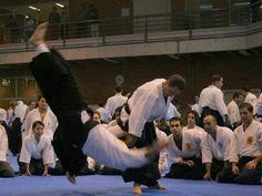 2007 Aikido, Dojo, Wrestling, Sports, Lucha Libre, Hs Sports, Sport, Hapkido