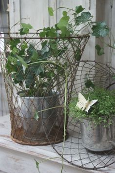 love the wire baskets.
